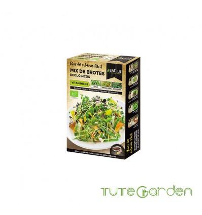 Semillas de brotes ecologicos vitaminicos