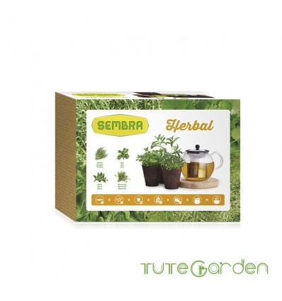 Mi huerto urbano - Kit herbal