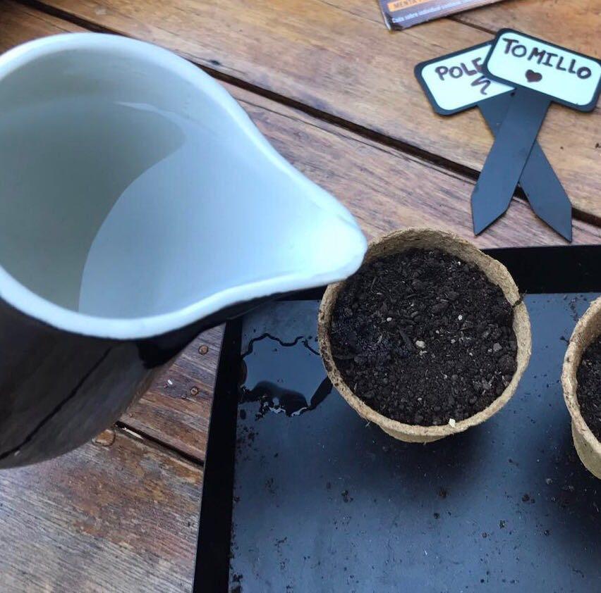 Regar los semilleros